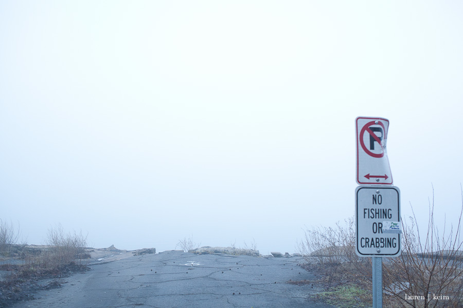 fog-6.jpg