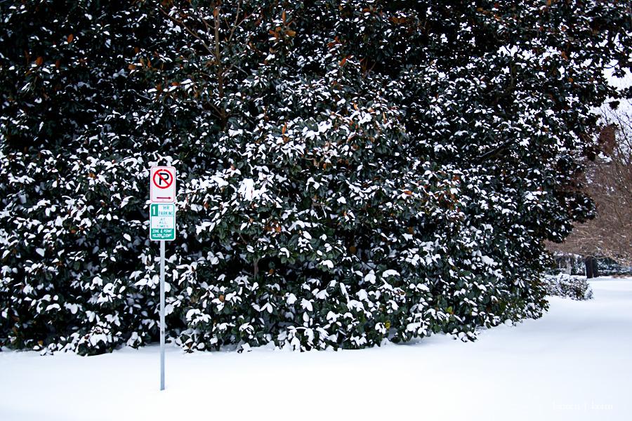 snow2-6.jpg