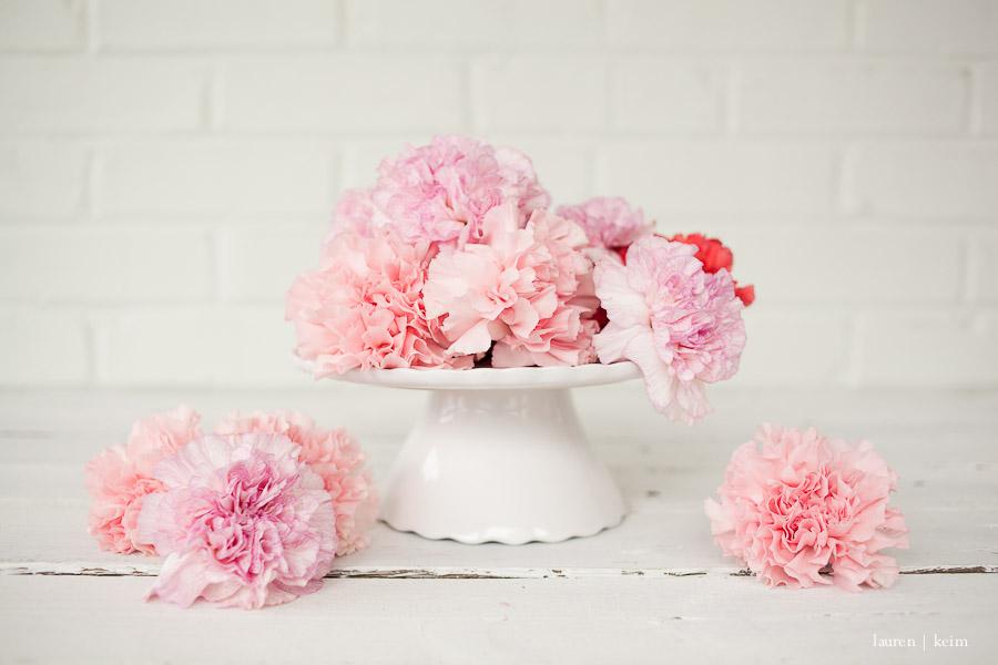 carnations-5.jpg