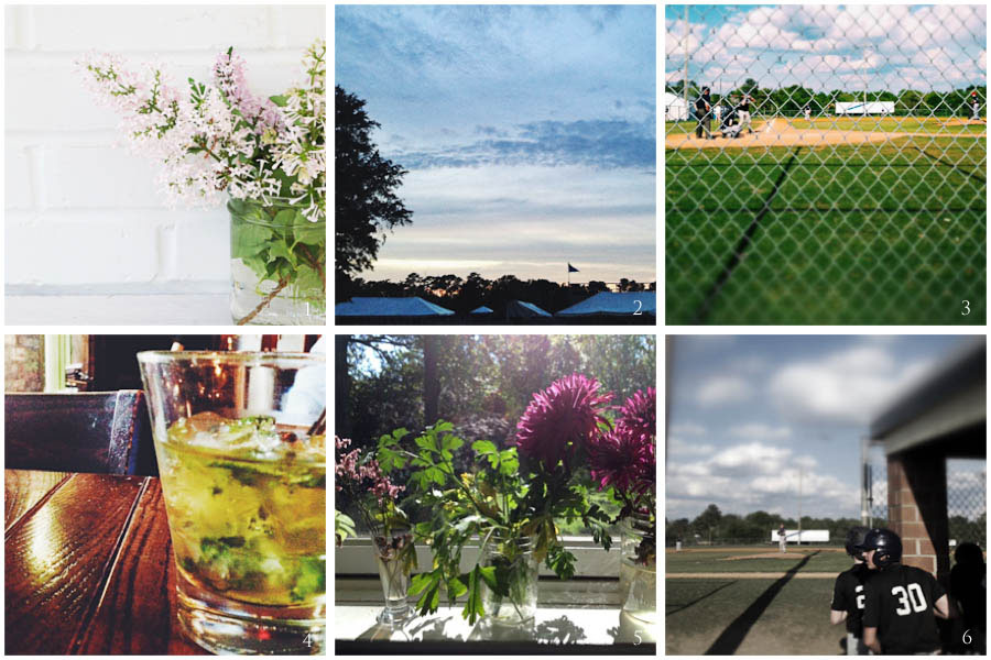 1. lilacs from Neel's garden | 2. quiet night | 3. baseball saturday | 4. mint julep | 5. sunny window | 6. baseball sunday