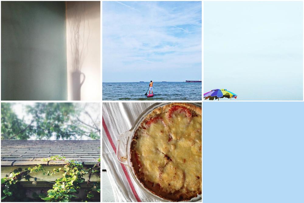 Row 1: morning sunlight | paddleboarding | beach time; Row 2: Morning in Neel's garden | tomato pie
