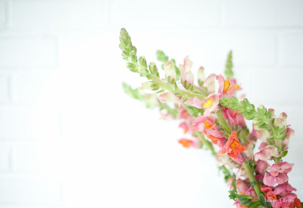 floral :: Canon 5D MII, 35mm