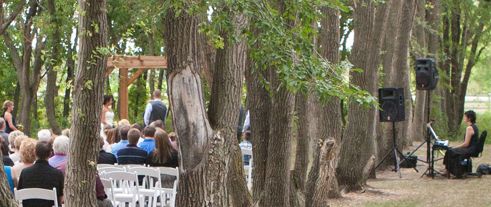 Provided piano music for wedding ceremony in the Natural Cathedral at Carlos Creek Winery