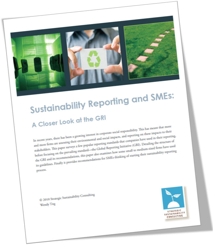 Sustainability Report for SMEs: A Closer Look at the GRI