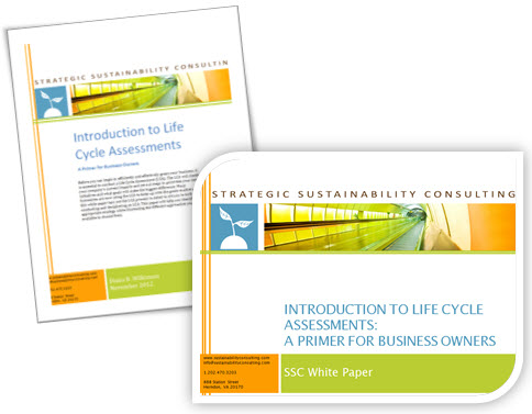 white paper and slides image.jpg