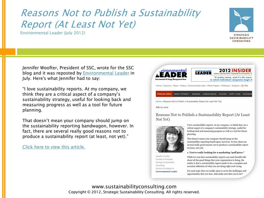 Reasons Not to Publish a Sustainability Report (At Least Not Yet)