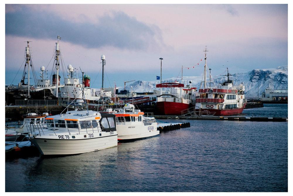 Icelandweb009.jpg