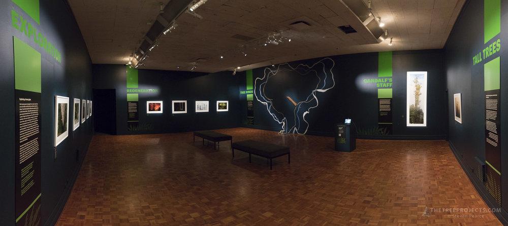 The TMAG exhibit