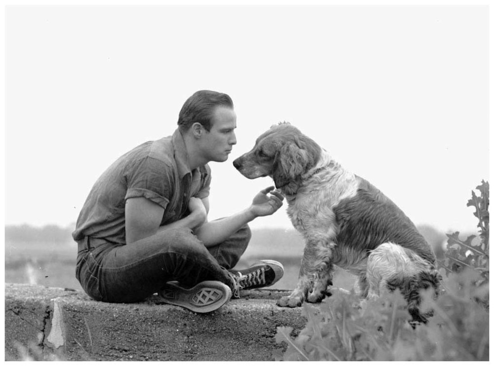 marlon-brando-1961-photo-art-shay.jpg