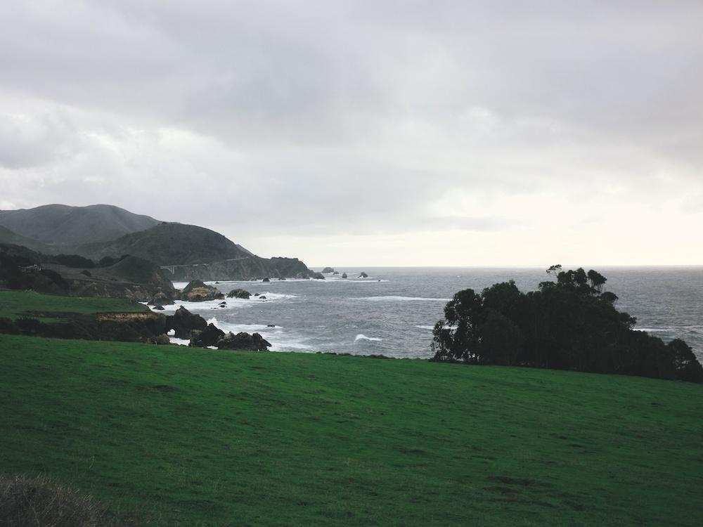 california christmas 9.jpg