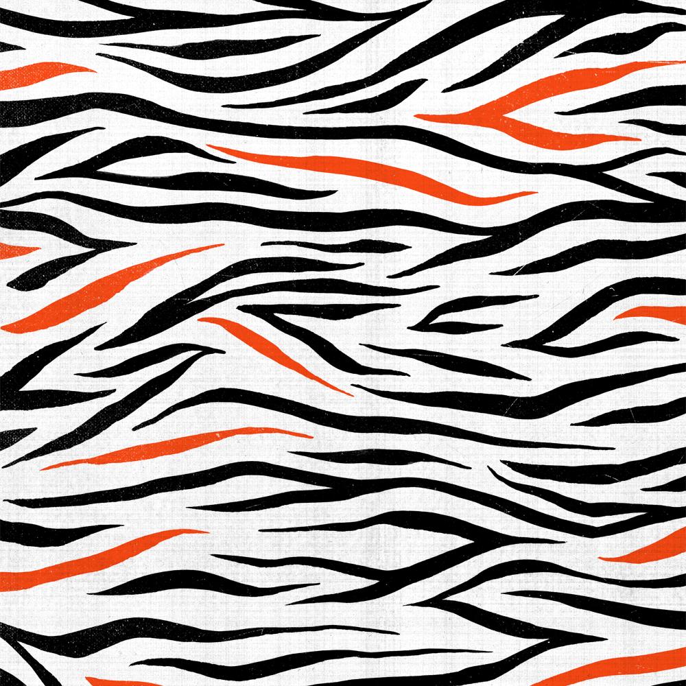 TrashRecords_Patterns_Zebra.png
