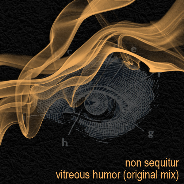 vitreous humor non sequitur electro trance electrance epic artist management ruby skye