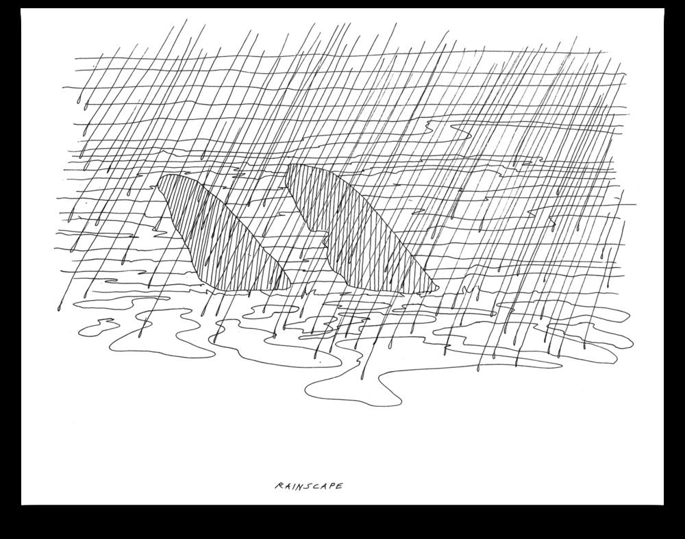 1989 Rainscape copy.png