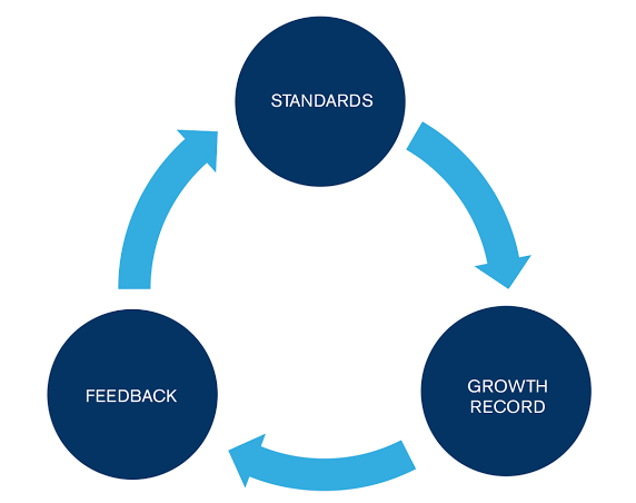 The ISB Professional Growth Framework is founded upon three key principles.