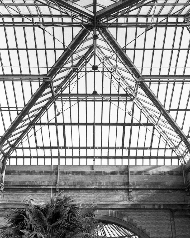 Photo: The Winter Greenhouse of the Antwerp ZOO, by Barend Jan de Jong (Wista SP, Schneider-Kreuznach Super-Angulon 5.6/65 on 6x9cm).