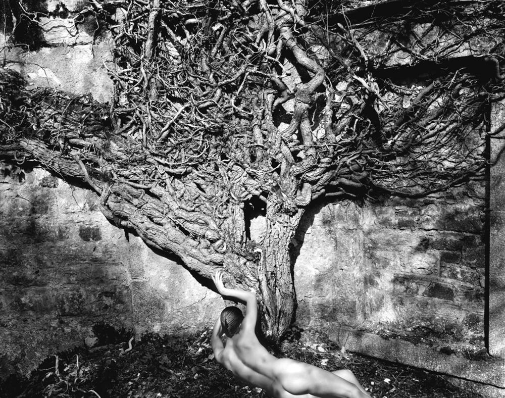 P hoto: Naked Vinde (1985), Copyright John Swannell.