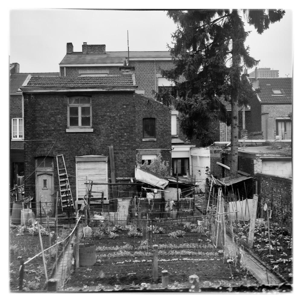 Photo: Life is a Journey: Backyard. (Photo by Barend Jan de Jong)
