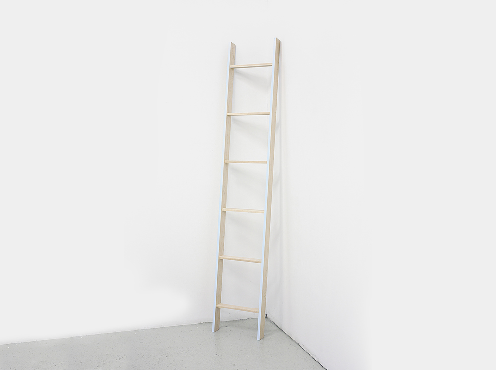 Ladder_2011_NickPoe.jpg