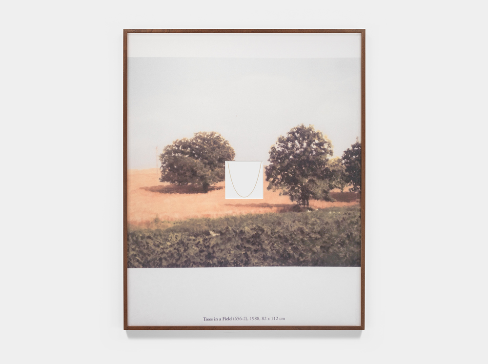 LandscapeChain_2015_NickPoe.jpg