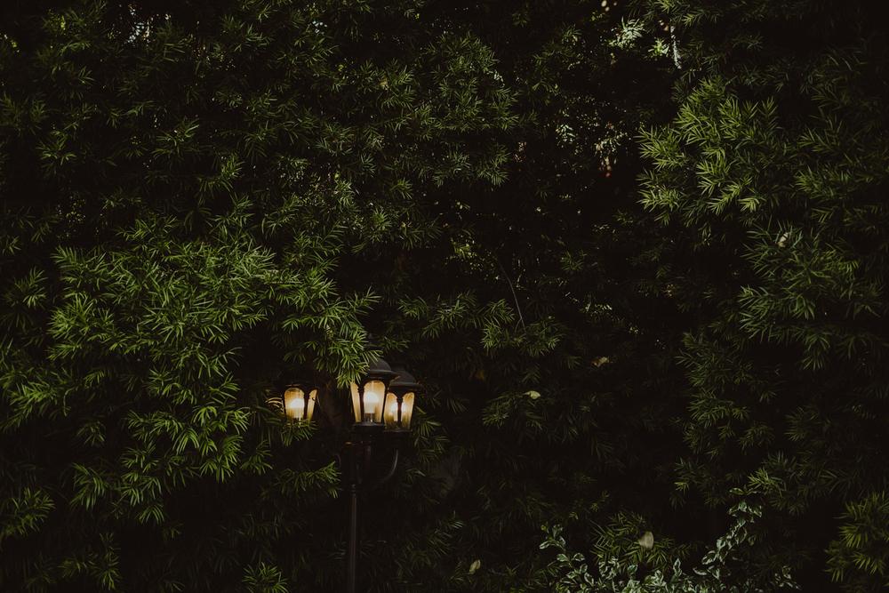 PaulSimonPhotography-JessicaJosh-SanJuanCapistranoWedding-60.jpg