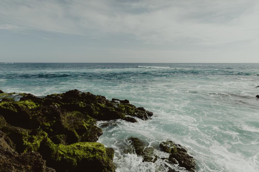 PaulSimonPhotography-AngieKevin-CaliforniaBeach_0032.jpg