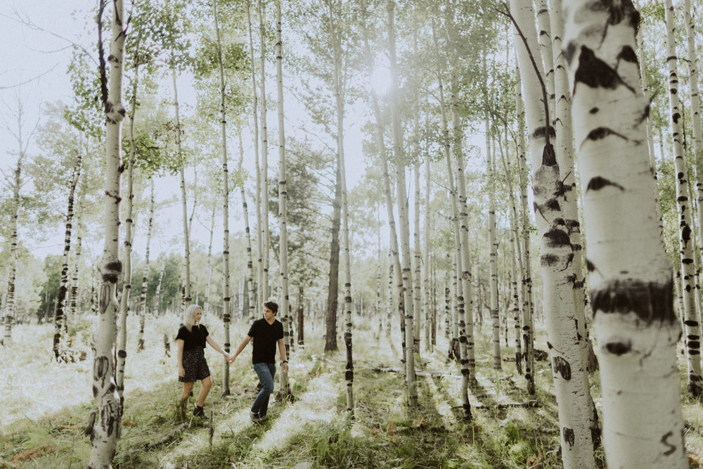PaulSimonPhotography-CaylaDrew-FlagstaffArizonaEngagement-1.jpg