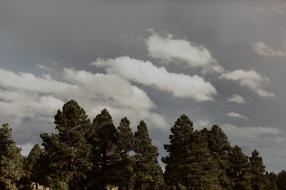 PaulSimonPhotography-CaylaDrew-FlagstaffArizonaEngagement-18.jpg