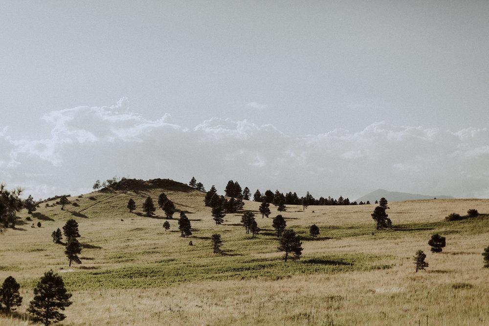 PaulSimonPhotography-CaylaDrew-FlagstaffArizonaEngagement-19.jpg