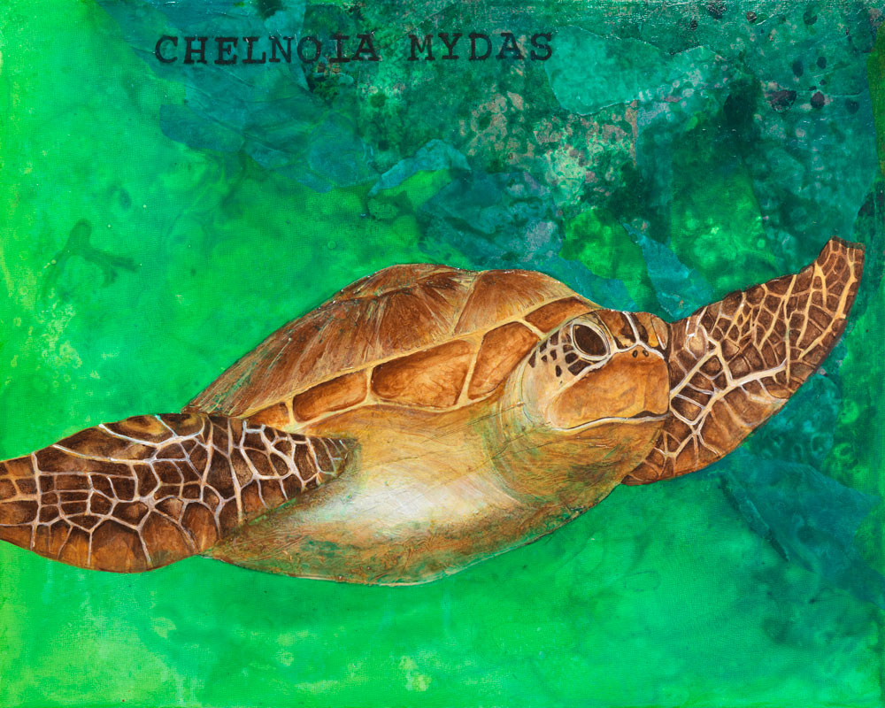 Chelnoia Mydas, Green Sea Turtle  ORIGINAL AVAILABLE 16x20 Mixed Media on Wood