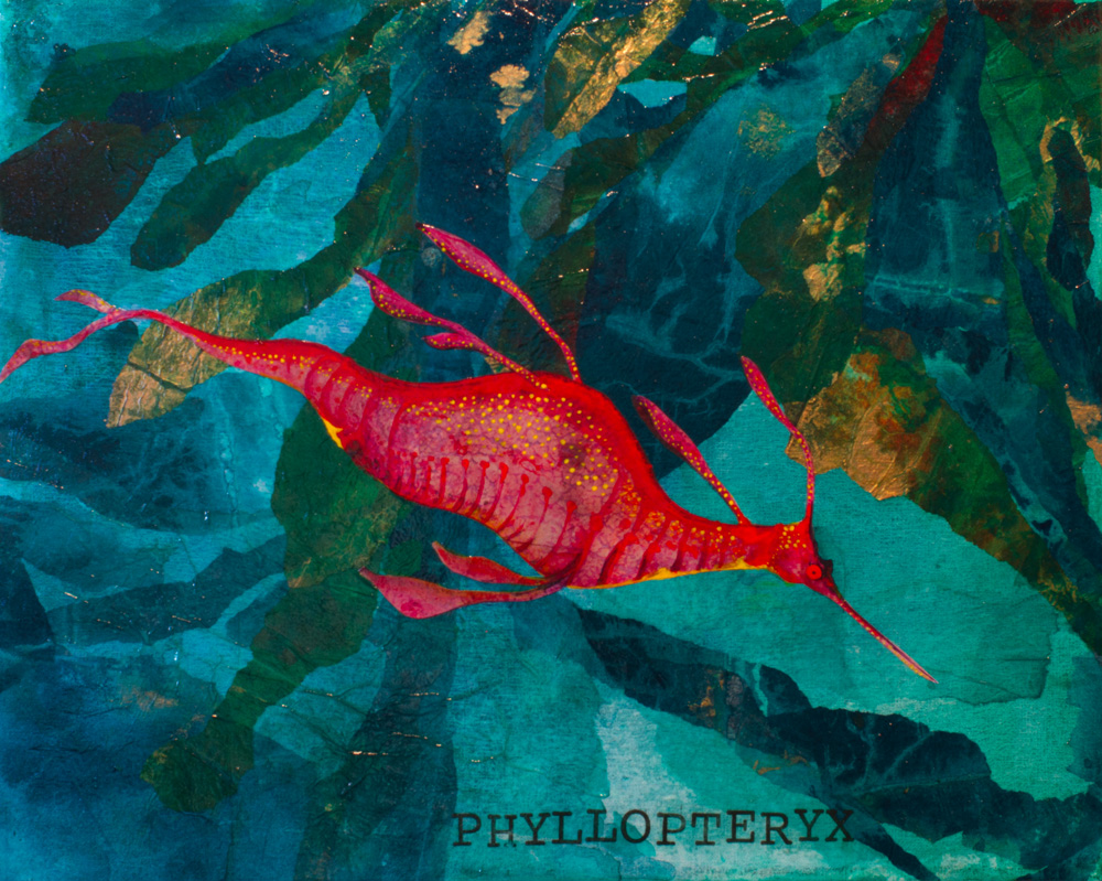 Phyllopteryx, Weedy Seadragon   ORIGINAL AVAILABLE 16x20 Mixed Media on Canvas