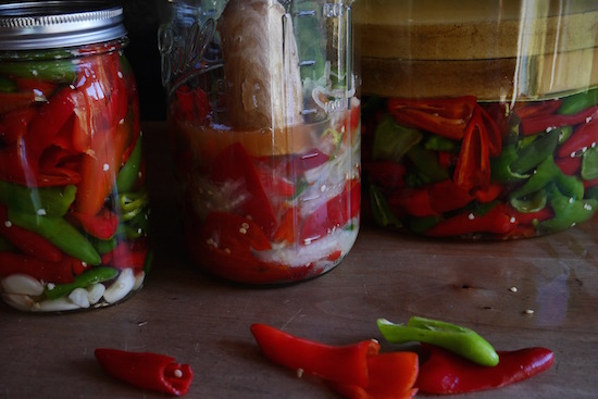 Lactofermented Pickled Peppers