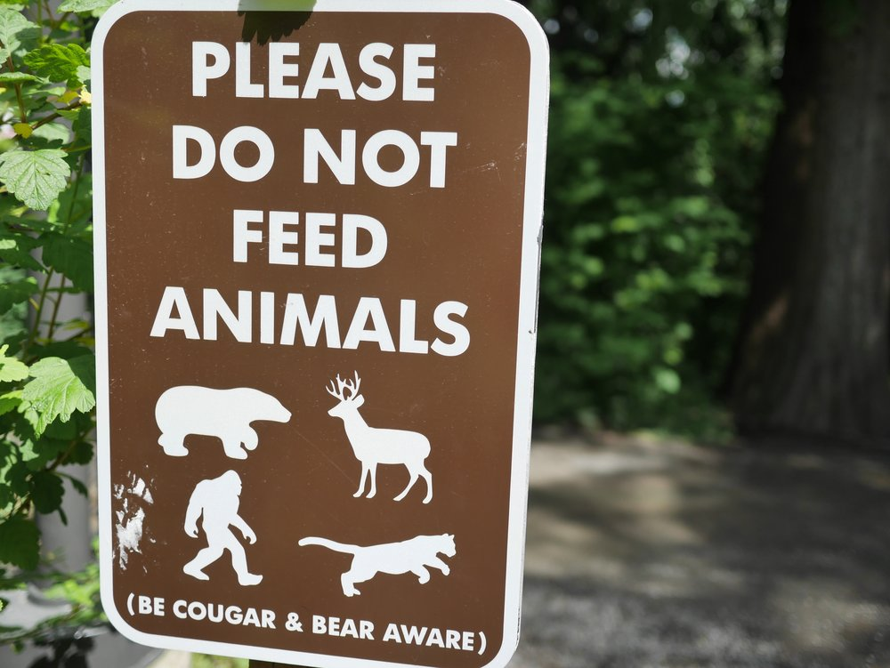 - You know when you are in the Pacific Northwest when a Sasquatch makes the list of animals to avoid feeding on the trail.