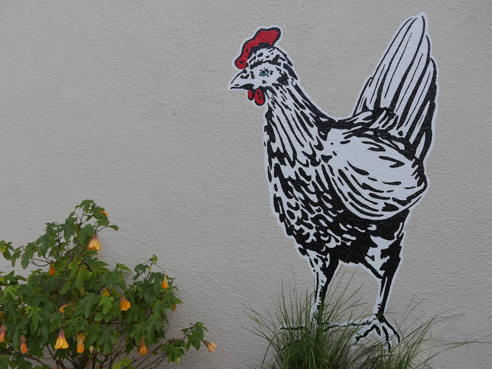 - Omnivore Books is just what you imagine an intimate bookstore that focuses upon food would be and more. Plus, just outside the door the largest guard chicken we have come across...