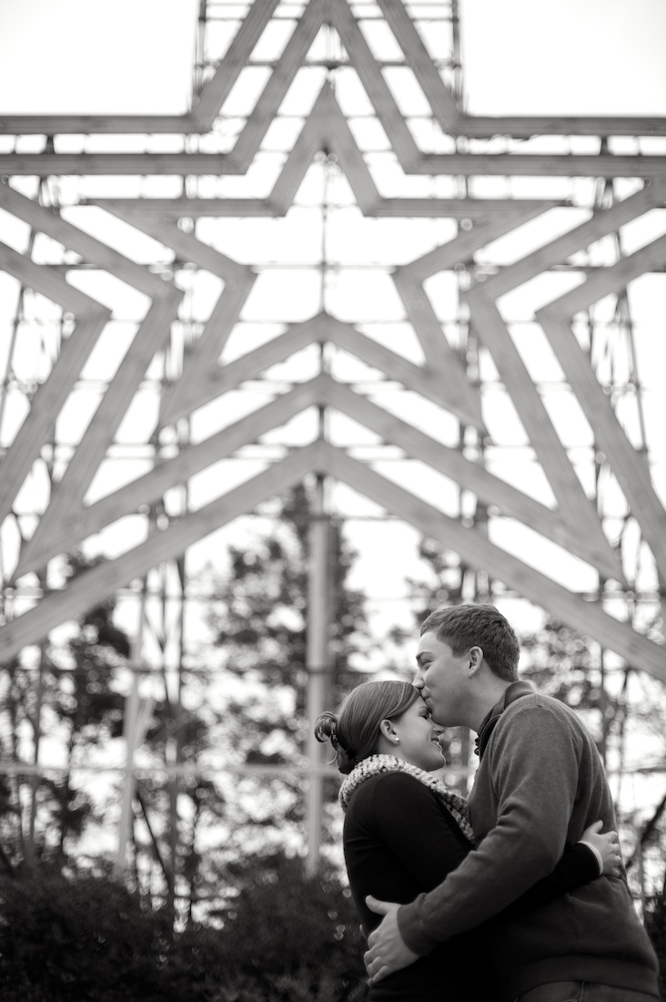 Engagement | Perkins-Henry | Roanoke | ©2012 Glessner Photography 009.jpg