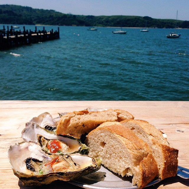 Barbecued Tomales Bay oysters at the Marshall Store via  Instagram .
