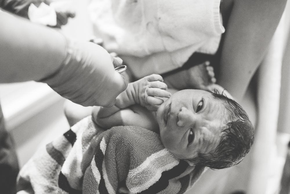 newborn at homebirth south tampa florida
