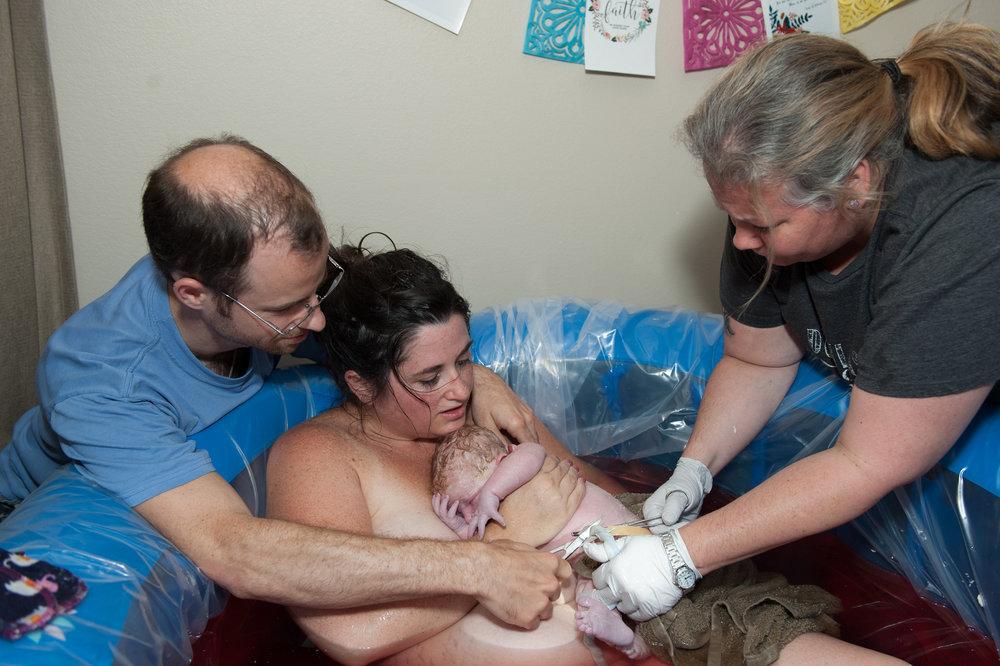 florida midwifery homebirth