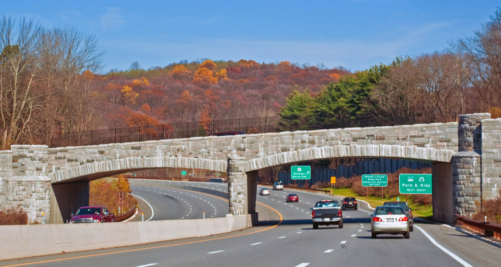 The Taconic