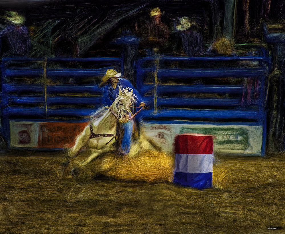 THE BARREL RACER