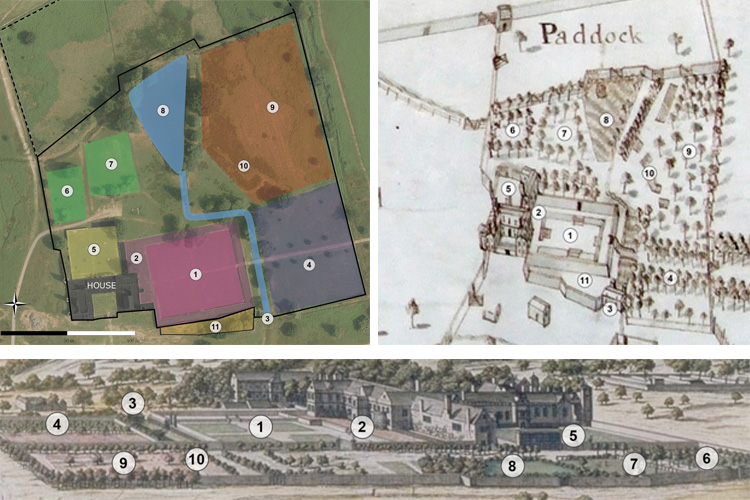 Analysis of the Tudor garden remains