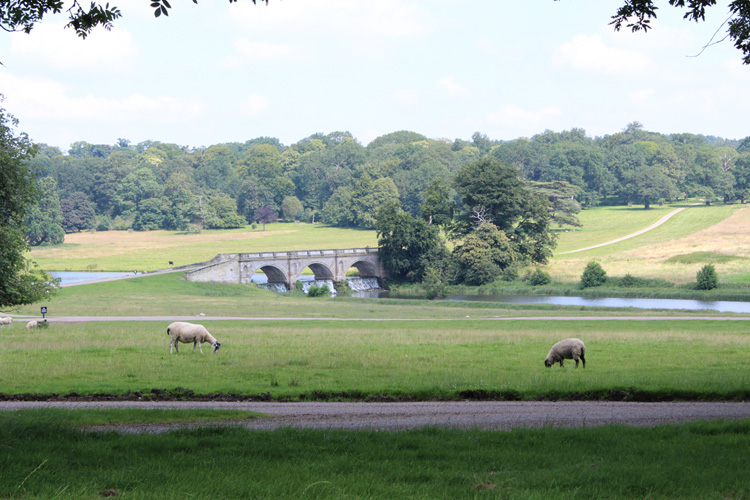 Environmental Stewardship & Historic Parklands