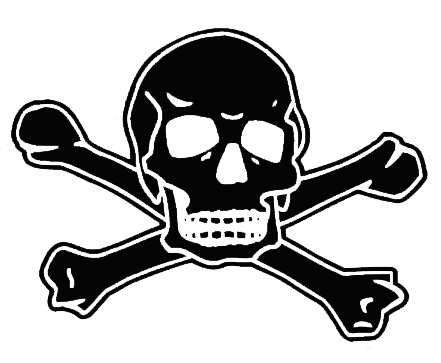 Black Skull on White Background