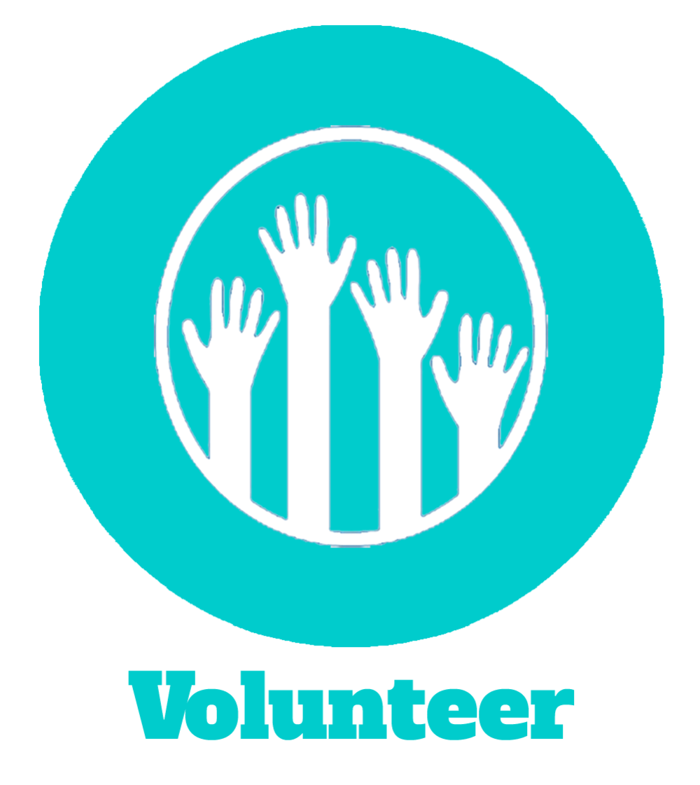 my volunteering opportunity at an exhibition Art and design volunteers for living community archives community exhibition and an volunteers for living community archives project at.
