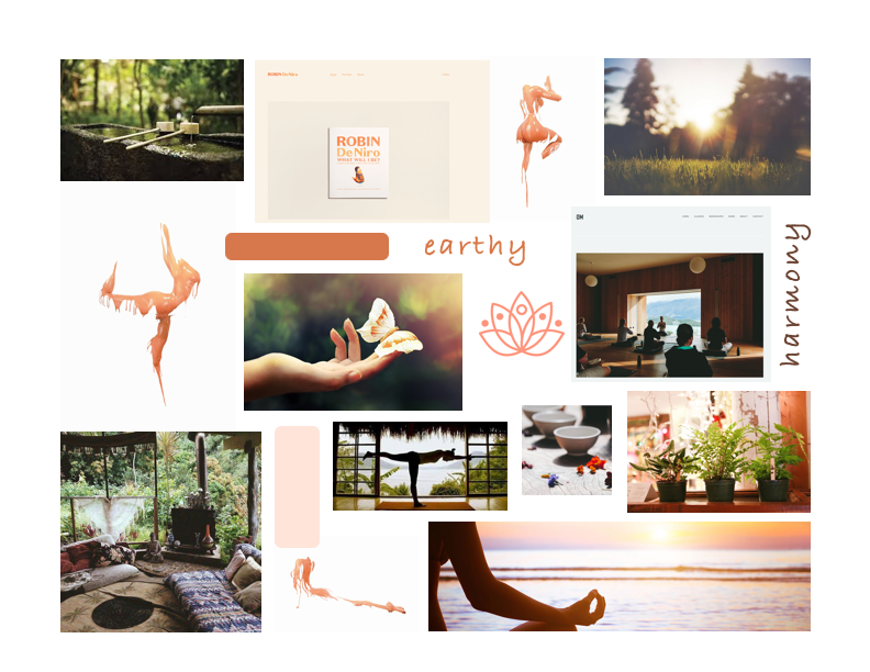 A mood board with an arrangement of images, illustrations, color swatches, and pieces of text, to give a general idea of the atmosphere of landing page concept ( https://en.wikipedia.org/wiki/Mood_board )