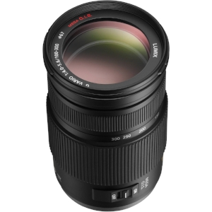 Lastly we have the Lumix VARIO 100-300/4.5-5.6. This lens includes the MEGA O.I.S. stabilization system and delivers the same field of view as a 200-600 on 35mm full frame.