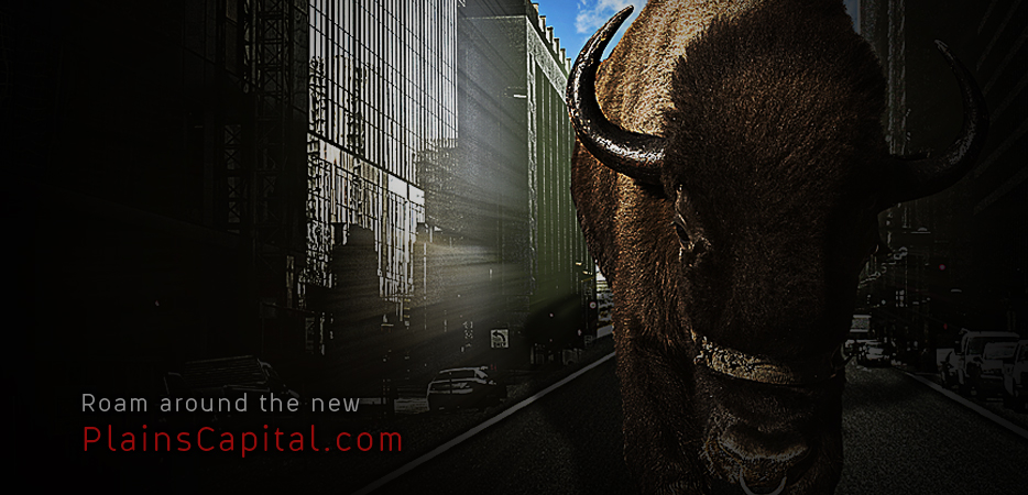 Roam around the new PlainsCapital.com