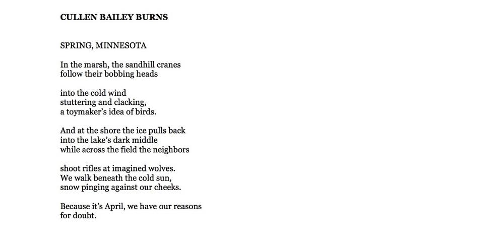 CULLEN BAILEY BURNS Poem.jpg