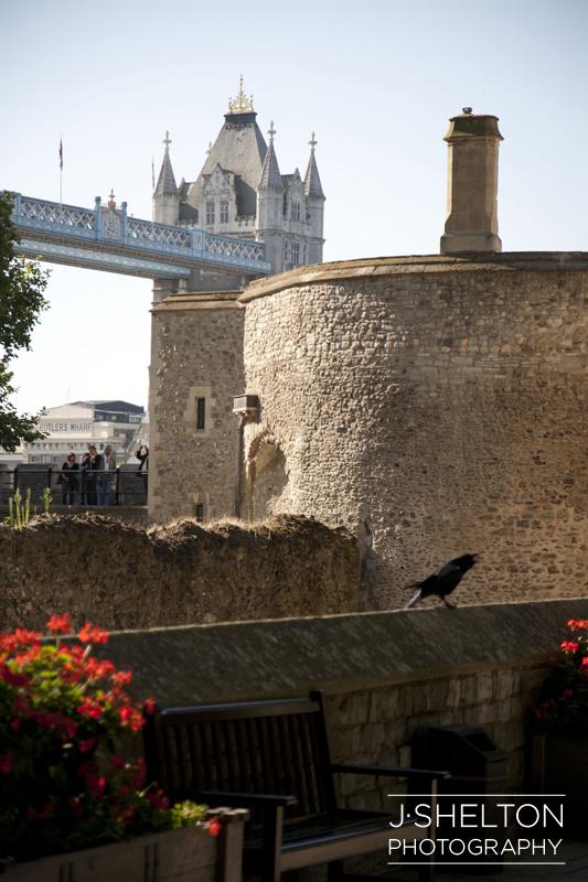 London32.jpg