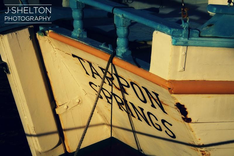 Tarpon8.jpg