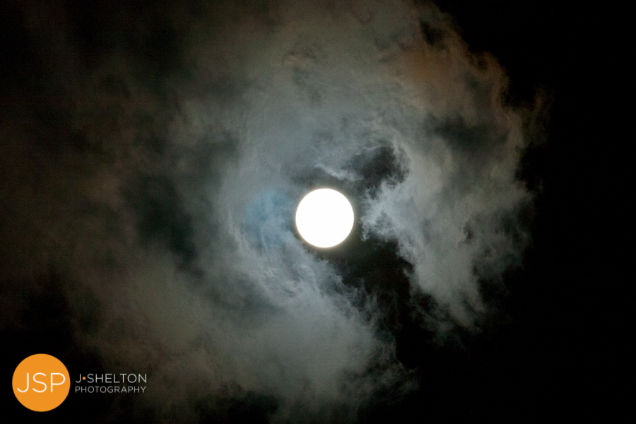 BlueMoon_8.31.12_017.jpg